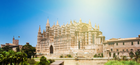mallorca: Beautiful Gothic Roman Catholic Cathedral of Santa Maria of Palma, more commonly referred to as La Seu (Balraric Islands - Spain). Tilt-shift lens used to accent the building and to emphasize the attention on it. Editorial