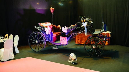 cinderella pumpkin: STRASBOURG, FRANCE - JAN 8, 2017: Luxury carriage ready for wedding or luxury event at French wedding fair