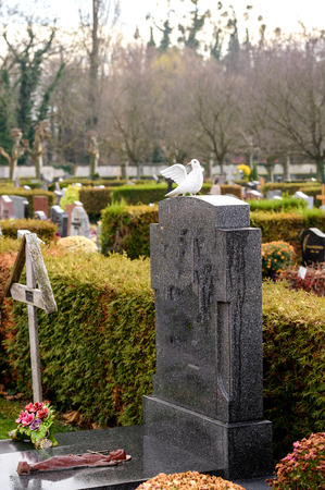 Marble tombstones in French cemetery with beautiful crafted crosses and white pigeon statue
