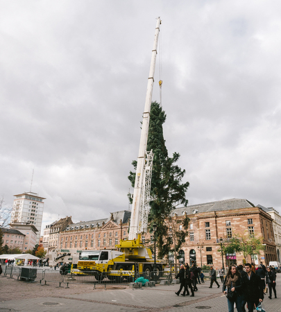 STRASBOURG, FRANCE - OCT 30, 2017: People admiring Strasbourg Christmas Tree Install in central Place Kleber Square by gigantic crane for the upcoming winter holidays Editorial