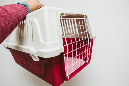 Man hand holding against white background animal pet cage used for cat and dog transportation in planes and buses