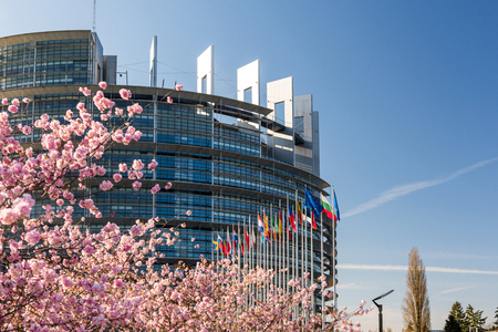 STRASBOURG, FRANCE - APRIL 6, 2018: European Parliament headquarter with cherry tree in bloom sakura flowers on a warm spring morning with all European union flags waving Editorial
