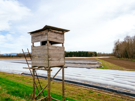 Surveillance hunting chalet next to asparagus plantation field in rural area with multiple rows covered with sun-protecting foil during winter spring - modern bio organic agriculture. Stock Photo