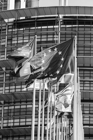 Flags of all member states of the European Union waving in calm wind in front of the Parliament headquarter on the day of 2019 European Parliament election - black and white image. Stock Photo