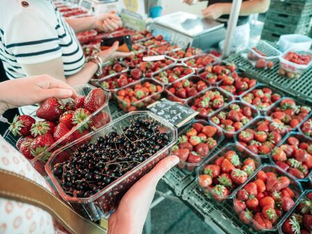 Closeup of woman hands holding shopping for fresh currant and strawberries on local farmers market - organic bio food harvested in French villages