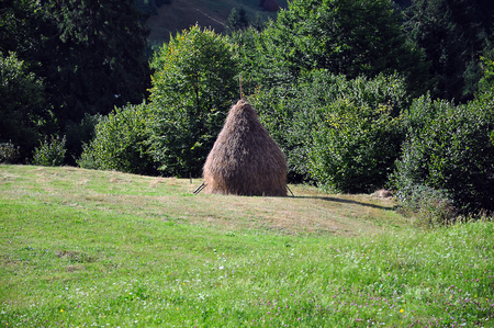 haystack: Lonely haystack on a green meadow Stock Photo