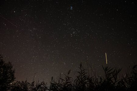 polaris: Falling stars on a serene sky