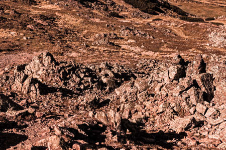 martian landscape with rocks