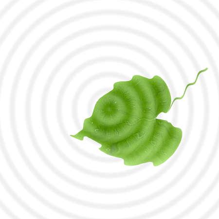 green leaf shaped liker a heart on rings background 版權商用圖片