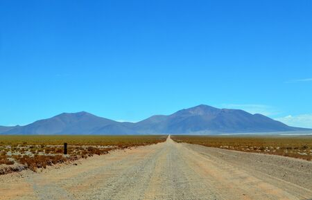 Provincial route 27 crossing the valley of the Pocitos salt flat. Salta, Argentina