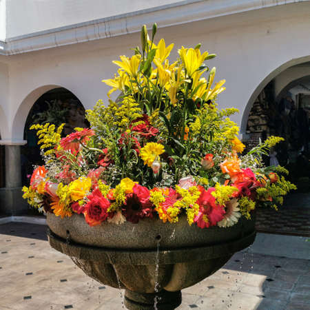Amazing colorful bouquet of flowers in a back yard in Antigua, Guatemala