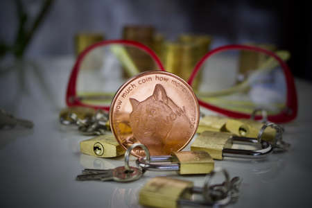 Digital currency physical brass doge coin padlocks concept