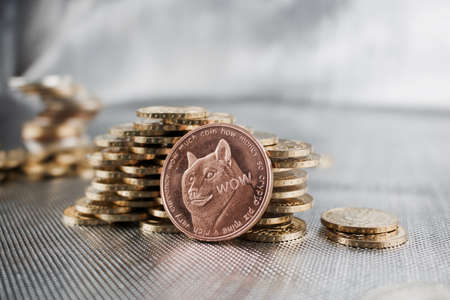 Digital currency physical brass doge coin money.