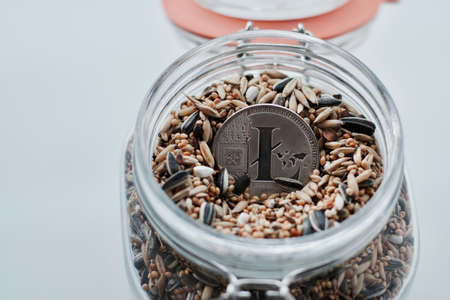 Cryptocurrency physical silver Litecoin coin in jar with seeds.