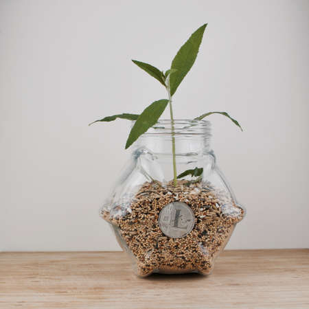 Digital currency physical silver litecoin coin in glass jar with seeds and green plant.