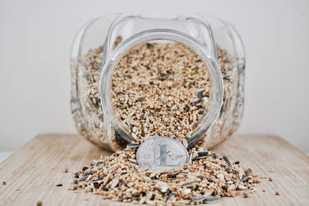 Digital currency physical silver Litecoin coin in fresh seeds from jar. Stock Photo