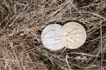 silver coins: Digital currency physical silver and gold litecoin coin in grass. Stock Photo