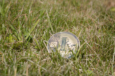Cryptocurrency physical gold litecoin coin in grass. Natural concept.