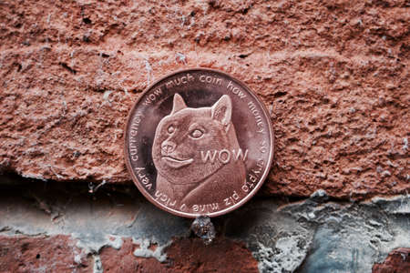 Digital currency physical brass dogecoin coin on brick wall.