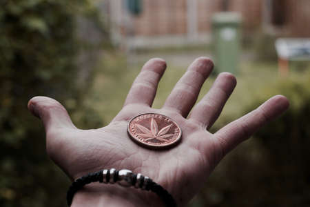 Legalize it. Brass cannabis coin with leaf on man hand in garden. Фото со стока