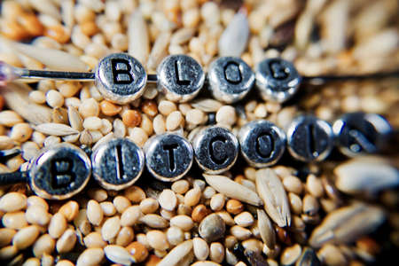 Digital currency bitcoin. Bitcoin blog sentence on the fresh seeds.