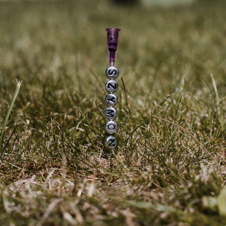 Small silver inscription on the needle. Szymon separate letters in green grass. Stock Photo