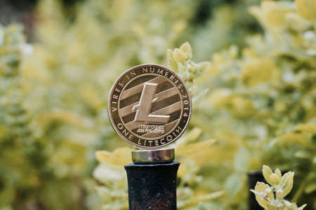 Digital currency physical metal litecoin coin on the green background. Outdoor cryptocurrency concept.