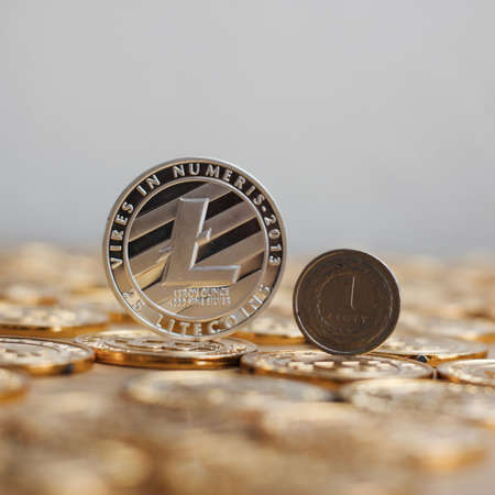 peer to peer: Crypto currency physical metal litecoin coin on the gold money. Digital currency concept.