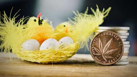 Physical metal brass marijuana coin. Easter marijuana concept. Stock Photo