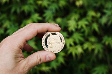 Digital currency physical metal gold dogecoin coin. Cryptocurrency outdoor concept.