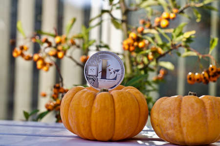 Digital currency physical metal litecoin coin. Cryptocurrency halloween concept. Stock Photo