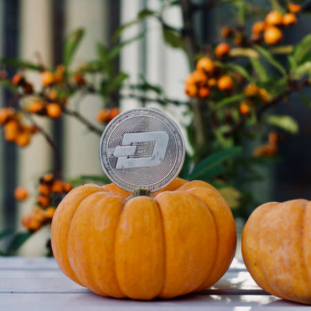 Digital currency physical metal silver dashcoin coin. Halloween cryptocurrency concept.