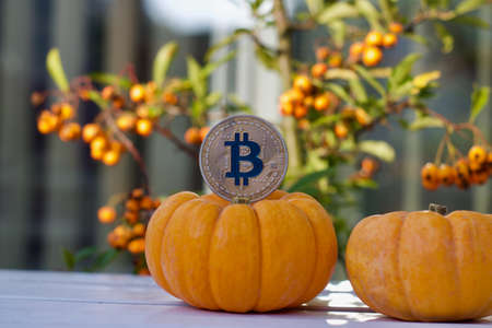 Digital currency physical metal bitcoin coin. Halloween cryptocurrency concept.