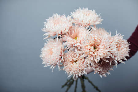 Beautiful bouquet of chrysanthemum Avignon. Flower delivery Stock Photo