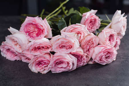 Close-up of pink roses. A girl holding a rose. Flowers Stock Photo
