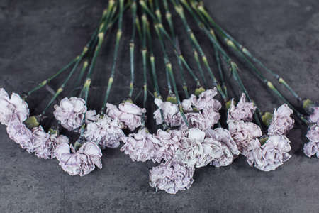 Beautiful bouquet of tinted dyed carnations. Flower delivery Stock Photo