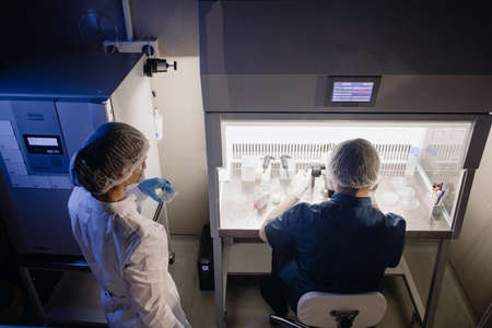 In a Modern Laboratory Scientist Conduct Experiments. Chief Research Scientist Adjusts Specimen in a Petri Dish and Looks on it Into Microscope.