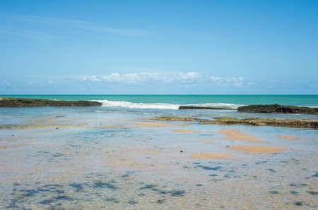 Crystal clear ocean water and lagoon reef, Recife beach, Brazil Imagens