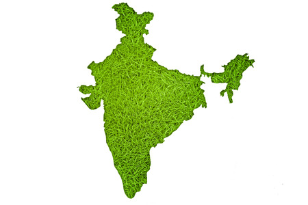 India map on green grass