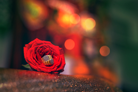 Goldener Verlobungsring mit roter Rosenblüte Standard-Bild