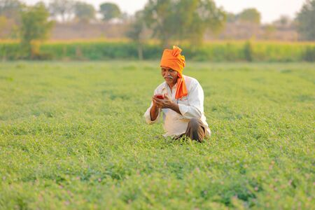Indian farmer using mobile phone at chickpea field