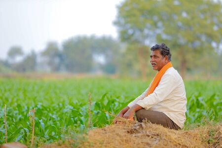 Indian farmer at green corn field Banco de Imagens