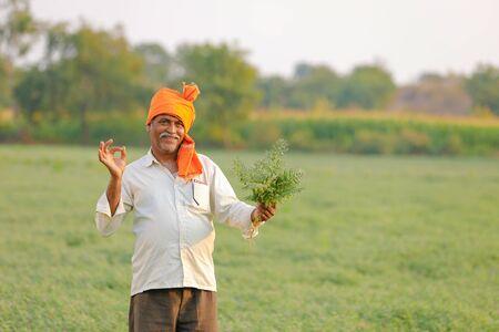 Indischer Bauer auf dem Kichererbsenfeld, Bauer, der Kichererbsenpflanze zeigt Standard-Bild