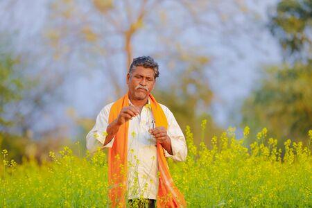 Indian farmer at black mustard  field Imagens
