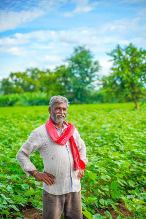 Indian farmer at cotton field Stock Photo