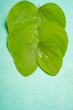 Indian festival dussehra , green leaf and rice