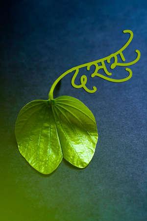 Indian festival dussehra , green leaf, dasra in marathi calligraphy 免版税图像
