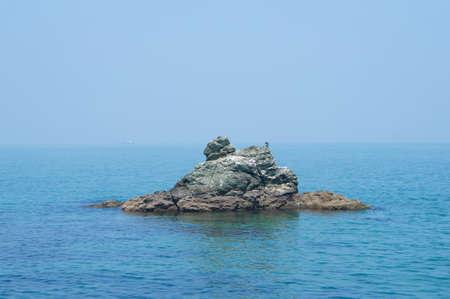 seabirds: Seabirds on the rocks beside ISE MeotoIwa