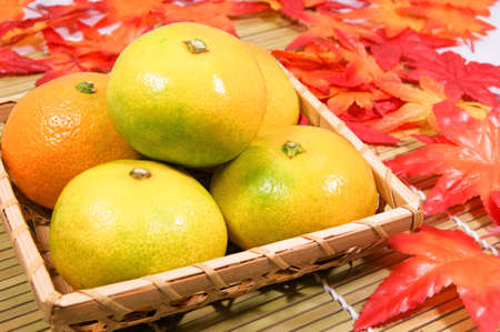 early: Early mandarin orange