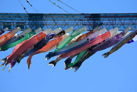 A lot of carp streamers lined with cranes Stock Photo